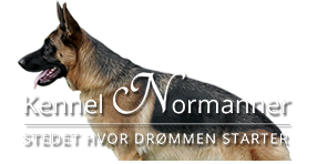 Kennel Normanner